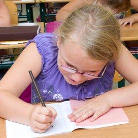 11 Plus Exam test areas